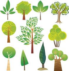 Samples of various tree species in various styles