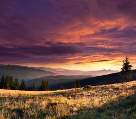 Wall Mural - Summer landscape in the mountains with dramatic sky.