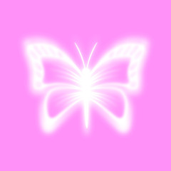 Butterfly on a pink background