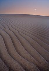 Dunes at sunset. Slowinski National Park