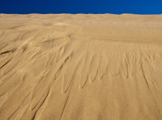 Sand and sky. Slowinski National Park