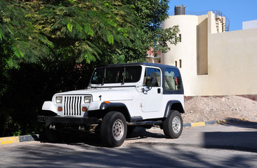 Jeep in the shade of the acacia trees.