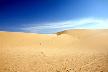 Poster de jardin Desert de sable Sand dunes in Sahara