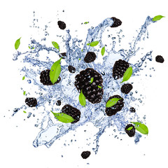 Deurstickers Opspattend water Fresh blackberries in water splash, isolated on white background