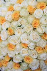 White and yellow roses in brdal flower arrangement