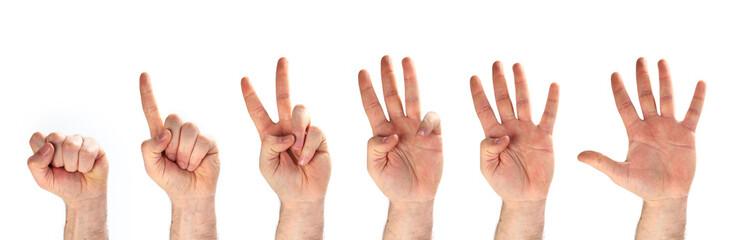 1-2-3-4-5 - mani e dita dita