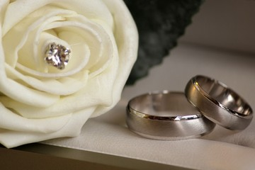 Wedding rings with rose