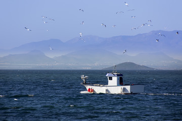 small sailing through the sea fishing