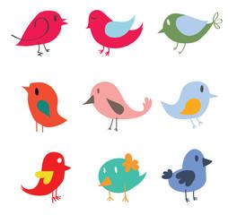 Set of different cute birds
