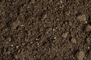 close-up of a soil