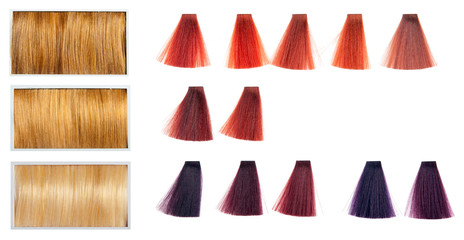 Locks of hair dyed in various shades.