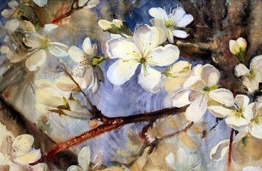 Watercolor painting of the white flowers.
