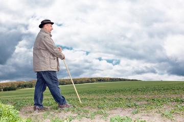 Farmer working in the fields