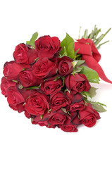 red roses isolated space for text