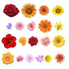 色々な花の素材