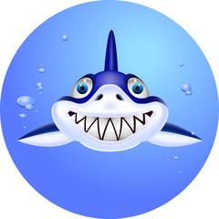 Funny shark cartoon head