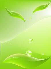 leaf vector background