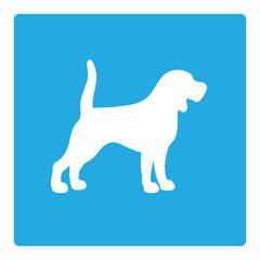 dog outline on blue background