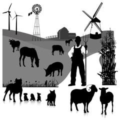 Vector set illustration: farm animals isolated on white
