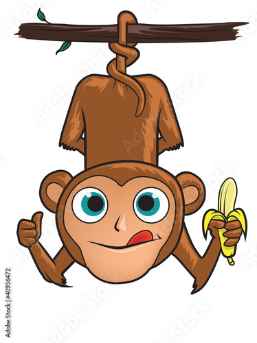 Monkey Swinging From A Tree Eating A Banana Stock Image And