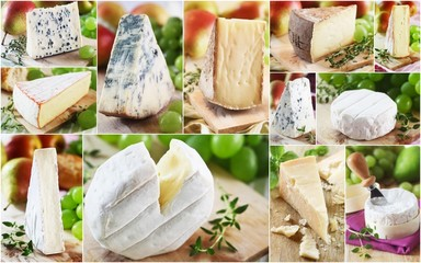 Collage - Cheeses