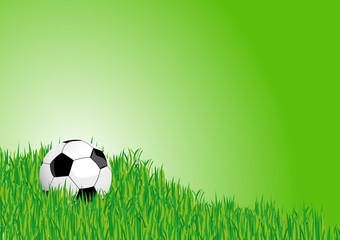 Fußball Hintergrund Rasen
