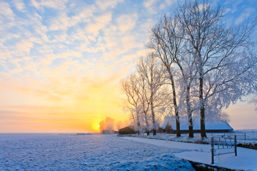 Keuken foto achterwand Zwavel geel Winter landscape at sunset