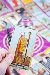 Page of Wands, Tarot card, Major Arcana