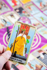 Queen of Wands, Tarot card, Major Arcana