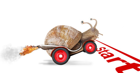 Speedy snail like car racer. Concept of speed and success