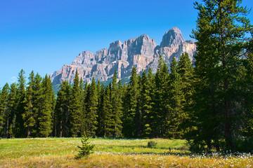 Nature landscape in Jasper National Park, Alberta, Canada