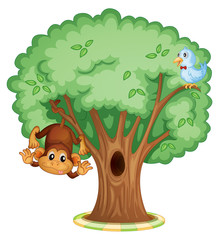 Poster Forest animals Monkey in a tree