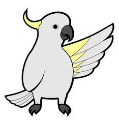 Cockatoo hello