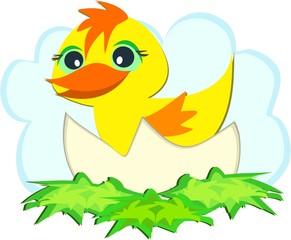 Duck in an Egg Shell