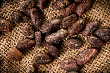 cocoa beans on burlap background