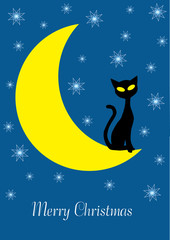 Printed roller blinds Heaven christmas vector illustration with cartoon cat on the moon