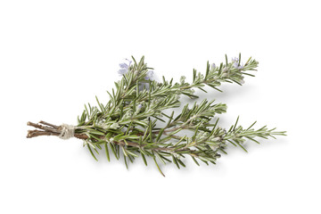 Bouquet of fresh blooming rosemary