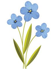 Summer blue flowers