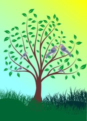 green tree in the spring with birds for your design