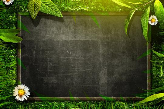 Nature Blackboard