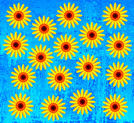 Yellow flowers on blue background