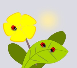 Tuinposter Lieveheersbeestjes Three cute ladybugs and a yellow flower