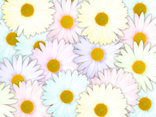 Background of motley flowers