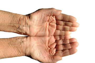 Hands of an elderly person, palms upwards, on a white background