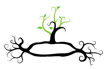 green tree plant, with frame for text, vector