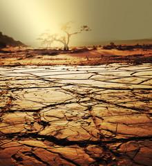 Keuken foto achterwand Zandwoestijn Drought land