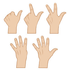 Hände zählend -farbig