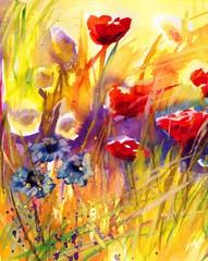 Garden Poster Painterly Inspiration piękne czerwone maki na polu