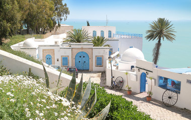 Photo sur Plexiglas Tunisie Tunis Sidi Bou Said- HDR