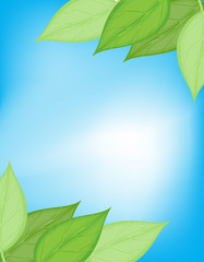Green and blue nature card